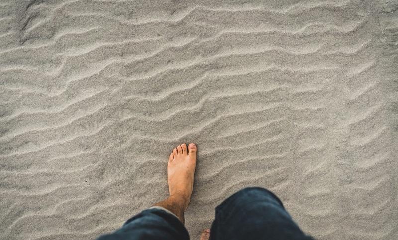 Musculatura del pie